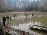 výlov obecního rybníka ve Hvozdci - pohled na rybáře